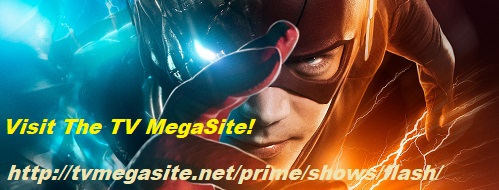 The Flash banner #2
