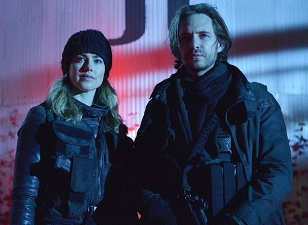 Aaron Stanford and Amanda Schull