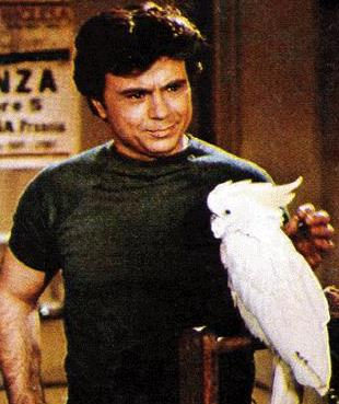 Baretta and his cockatoo