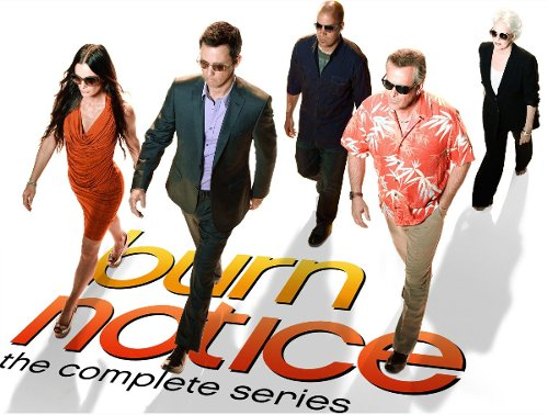 Burn Notice cast photo