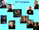 Gil Grissom wallpaper