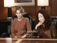Meredith and Cristina wallpaper thumbnail