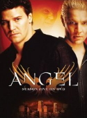 Angel Season Five DVD cover