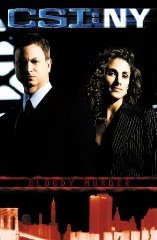 CSI NY book cover Bloody Murder