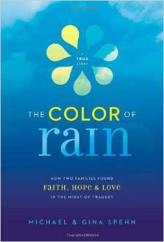 The Color of Rain book cover