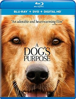 A Dog's Purpose [Blu-ray] DVD cover
