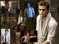 small Stefan collage